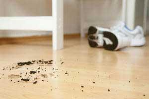 Bei grobem Schmutz hilft nur ein Staubsauger